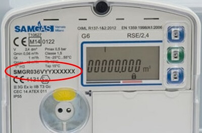 Matricola Contatore Elettronico Gas ...